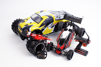 RC Car Selection Image